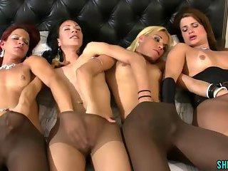 foursome shemale sluts group fuck